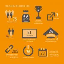 Infografik: Erfolge 2013 © Salzburg Research