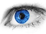 LNF16_SRFG_I6_innoLens_(cc0)pixabay